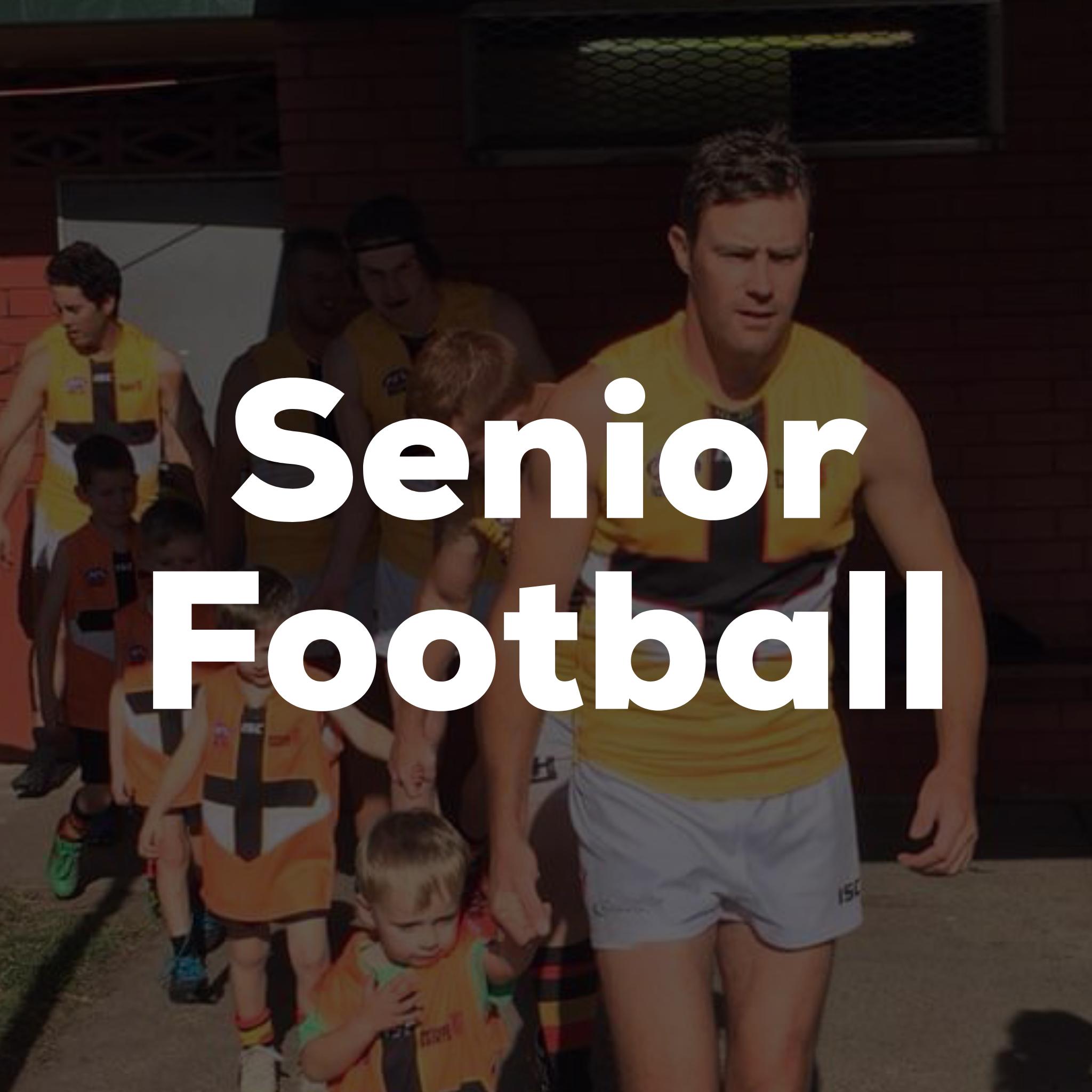 seniorfootballbutton